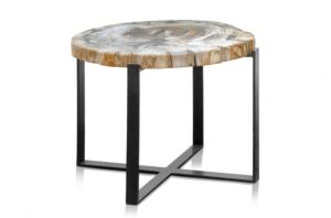petrified-wood-coffeetable